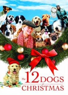 12 рождественских собак смотреть онлайн бесплатно HD качество