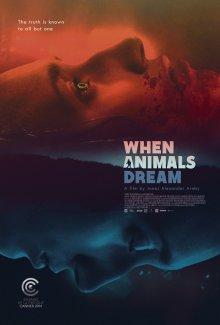 Когда звери мечтают