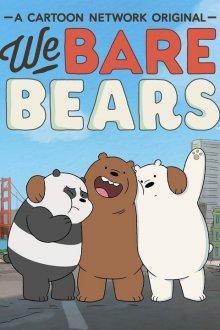 Вся правда о медведях / Мы обычные медведи