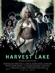 Озеро желаний смотреть онлайн бесплатно HD качество