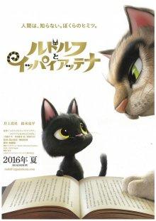 Черный кот Рудольф