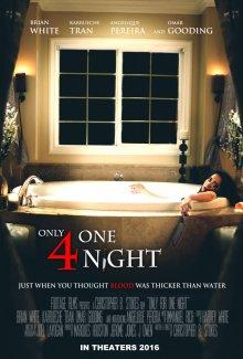Только на одну ночь смотреть онлайн бесплатно HD качество