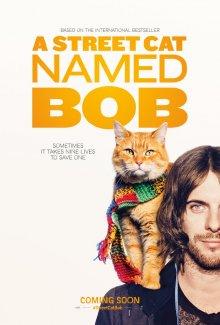 Уличный кот по кличке Боб смотреть онлайн бесплатно HD качество