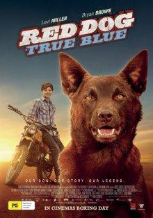 Рыжий пес: Самый верный / Рыжий: Вся правда