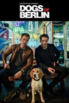 Собаки Берлина онлайн бесплатно