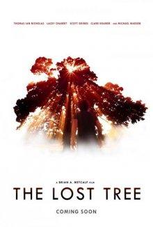 Потерянное дерево