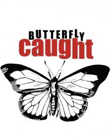 Поймать бабочку