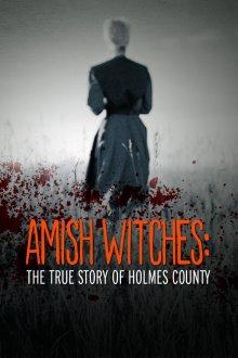 Амишские ведьмы: Правдивая история округа Холмс смотреть онлайн бесплатно HD качество