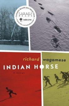 Индейский конь