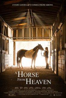 Небесный конь смотреть онлайн бесплатно HD качество