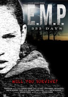 Э.М.И. 333 дня