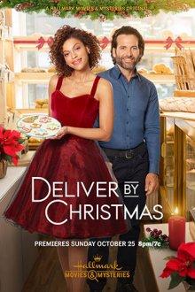 Доставить к Рождеству смотреть онлайн бесплатно HD качество