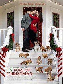 12 щенят Рождества