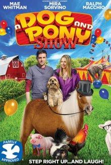 Шоу собаки и пони