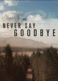 Никогда не говори «прощай» онлайн бесплатно