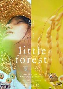 Небольшой лес: Лето и осень