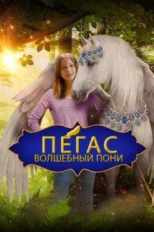 Пегас: Волшебный пони / Пони со сломанным крылом смотреть онлайн бесплатно HD качество